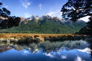 Mother-Natures-Mirror-New-Zealand-Milford-Sound-Mirror-Lake